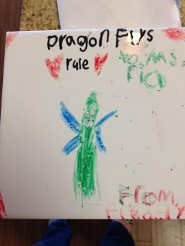 Dragonflies Rule