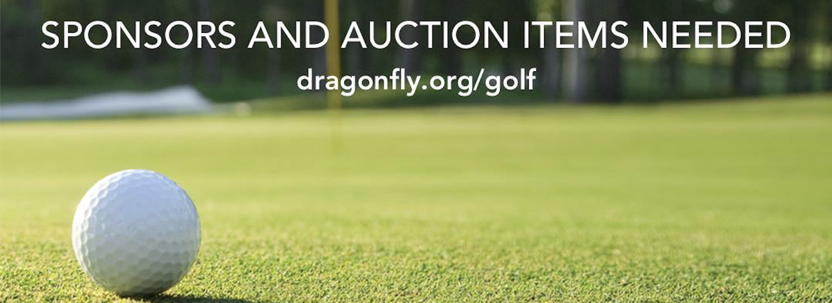 Dragonfly Golf Classic on 5/11/20
